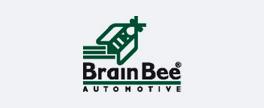 Brain Bee - Recambios Automoción - Seamo